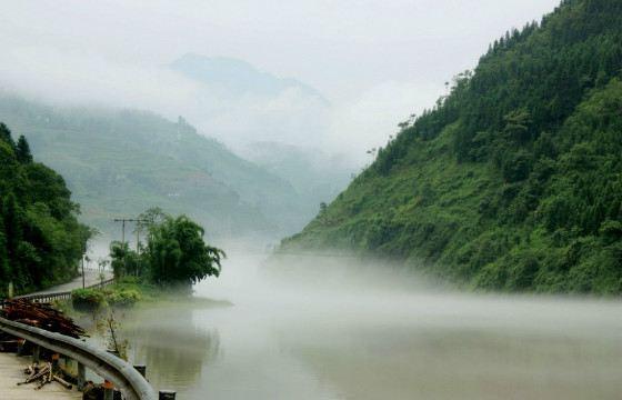 В Лощине черного бамбука часто в считанные секунды опускается туман
