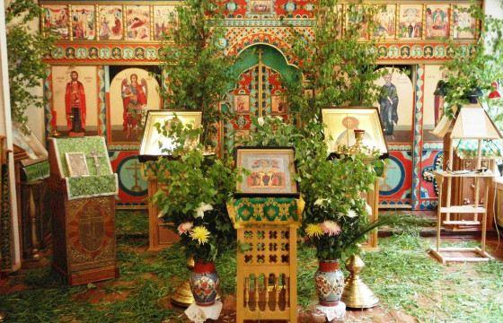 На Троицу березовыми ветками украшают храмы и дома