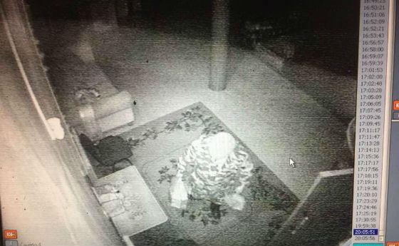 «Ожившую мумию» из Иволгинского дацана сняли на видео