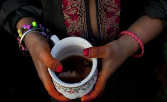 All about the most expensive teas and their features