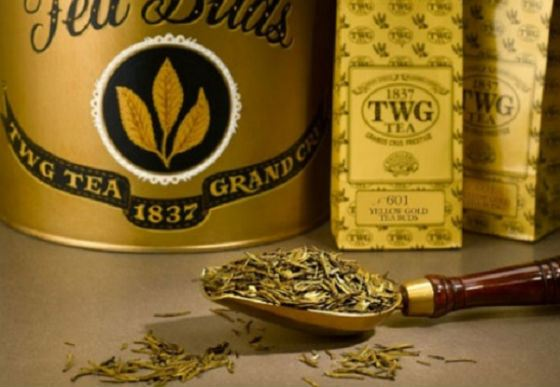 Yellow Gold Tea Buds called gold for a reason