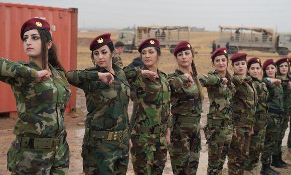 Иракский Курдистан просит у РФ помощи в борьбе с ИГ