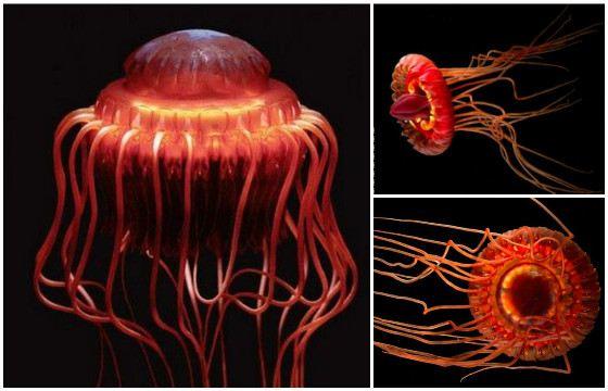 Медуза начинает светиться в момент опасности
