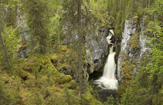 «Югыд ва» - самый крупный в России национальный парк