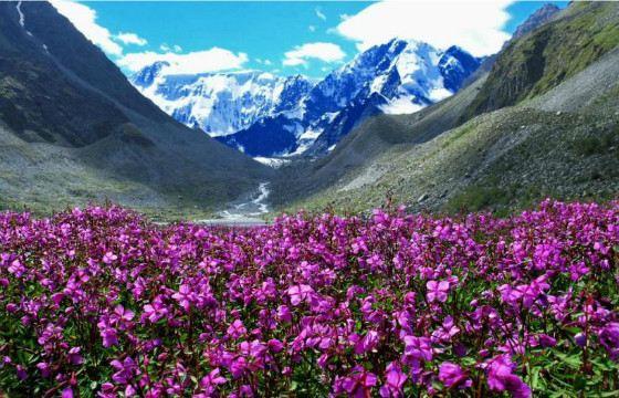 Гора Белуха  - одна из крупнейших горных вершин России