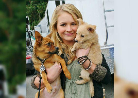Бритт Робертсон и ее собаки