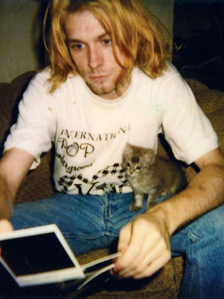 Курт кобейн с котом