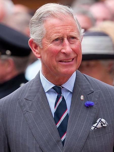 Commons:Category:Charles, Prince of Wales. Викисклад. Prince Charles 2012